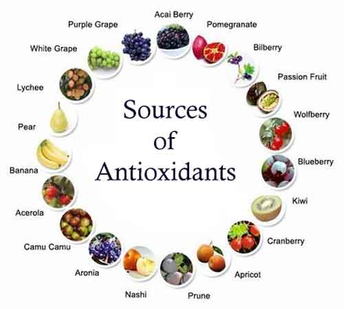 antioxdent_food_1