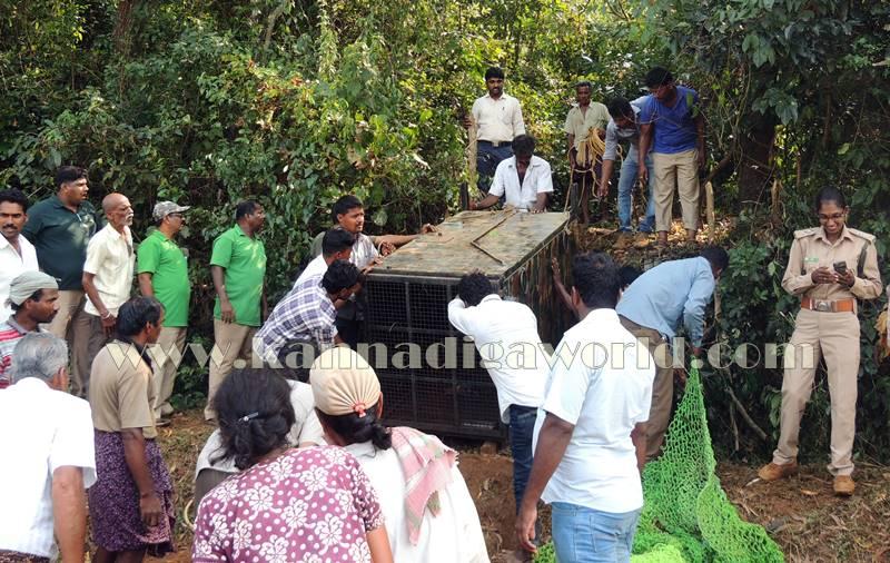 kundapura_operation_cheetha-25