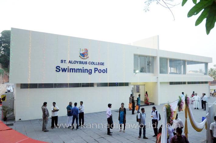 aloyuies_swimng_pool_31