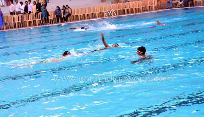 aloyuies_swimng_pool_8