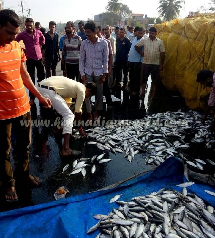 kundapura_fish-lorry_pulty-4