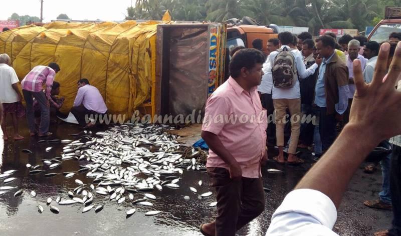 kundapura_fish-lorry_pulty-5