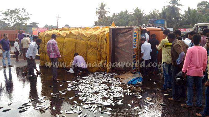 kundapura_fish-lorry_pulty-7