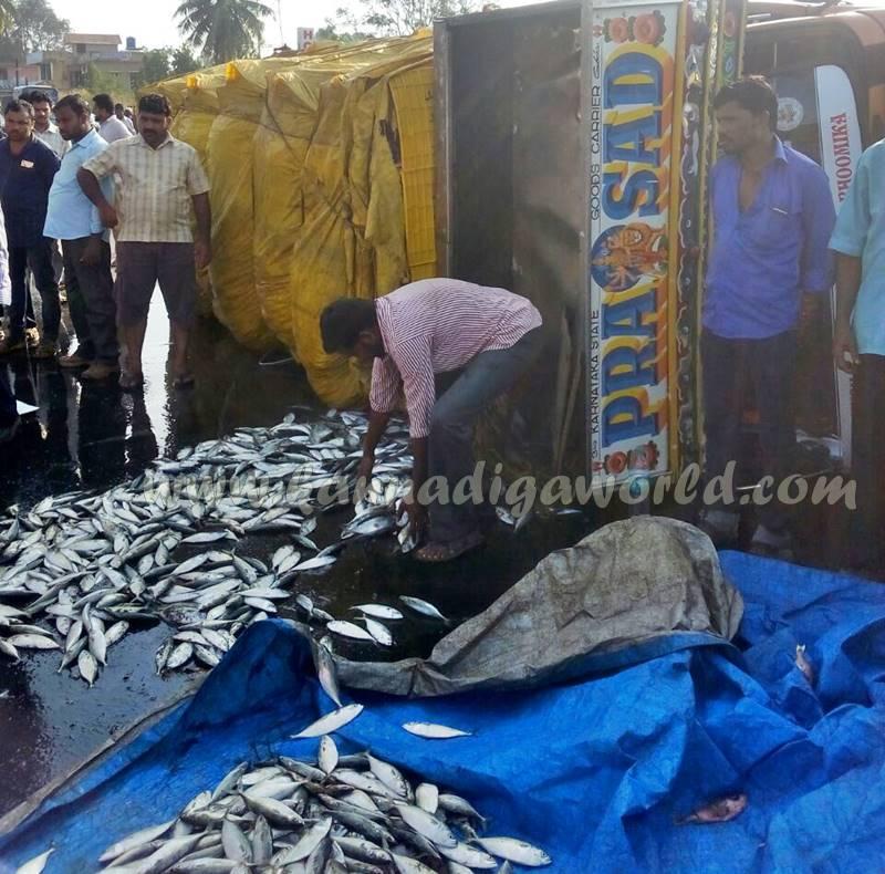 kundapura_fish-lorry_pulty-8