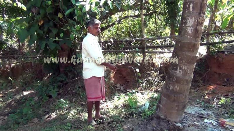 kundapura_fresh_water-11