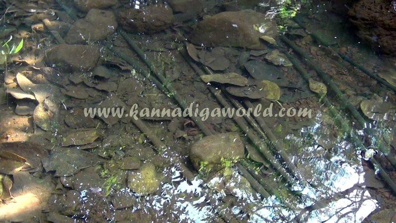 kundapura_fresh_water-3