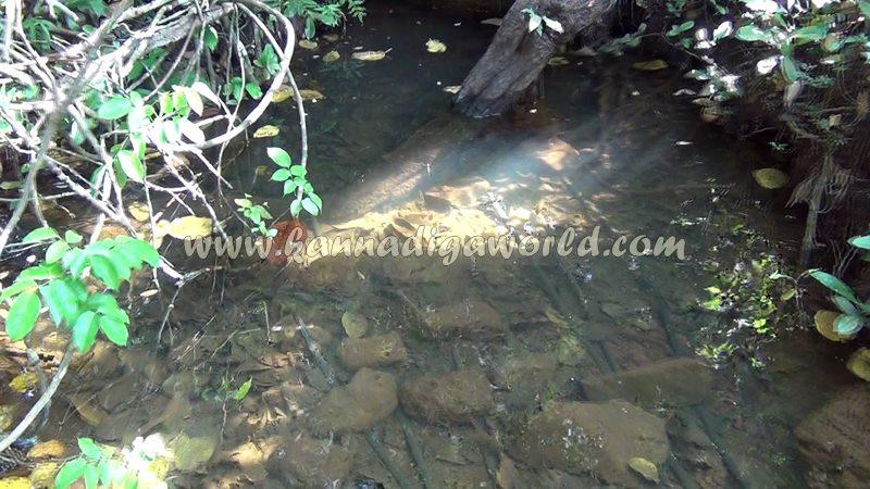kundapura_fresh_water-5