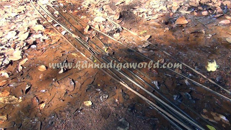 kundapura_fresh_water-6