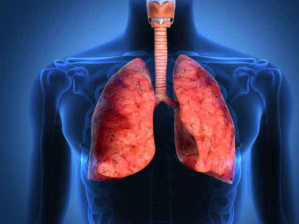 healthy_lungs_photo