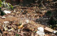 ಶ್ರೀಮತಿ ಶೆಟ್ಟಿ ಬರ್ಬರ ಹತ್ಯೆ : ಕೈ, ಕಾಲುಗಳು ನಂತೂರು ಬಳಿ ಪತ್ತೆ