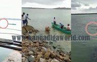 ಗಂಗೊಳ್ಳಿ: ಜೀವದ ಹಂಗು ತೊರೆದು ಹೊಳೆಗೆ ಬಿದ್ದ ಗೋವಿನ ರಕ್ಷಣೆ (Video)