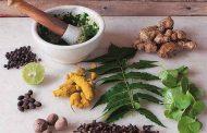 ಮಳೆಗಾಲದಲ್ಲಿ ಆಹಾರಗಳಿಗೆ ಅರಶಿನ, ಕಾಳುಮೆಣಸು ಶುಂಠಿ ಬಳಸುವುದು ಉತ್ತಮ, ಯಾಕೆ ಗೋತ್ತೆ?