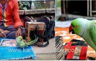 ಮಂಗಳೂರಿನಲ್ಲಿ ಗಿಳಿ ಶಾಸ್ತ್ರ ಹೇಳುತ್ತಿದ್ದ ಐವರನ್ನು ವಶಕ್ಕೆ ಪಡೆದ ಅರಣ್ಯಾಧಿಕಾರಿಗಳು